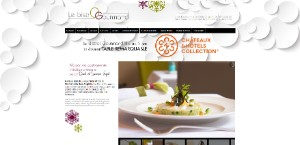 Exemple e-monsite : le bistrot gourmand