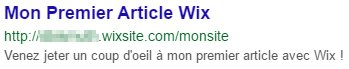 Wix ou WordPress : aperçu sur Google
