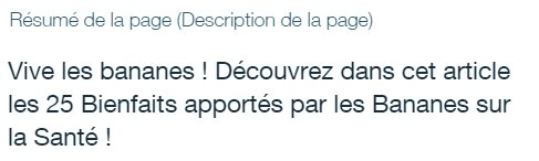 Description de la page d'un site Wix